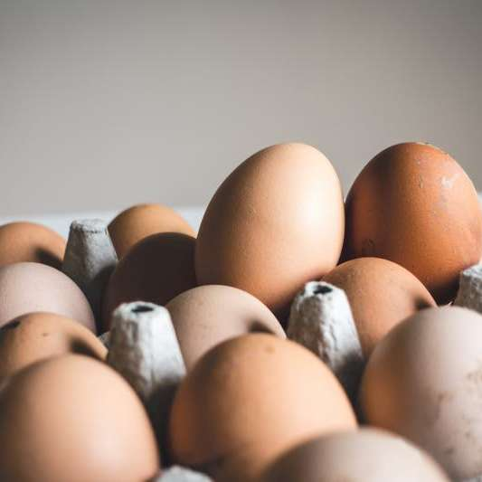 eggsales